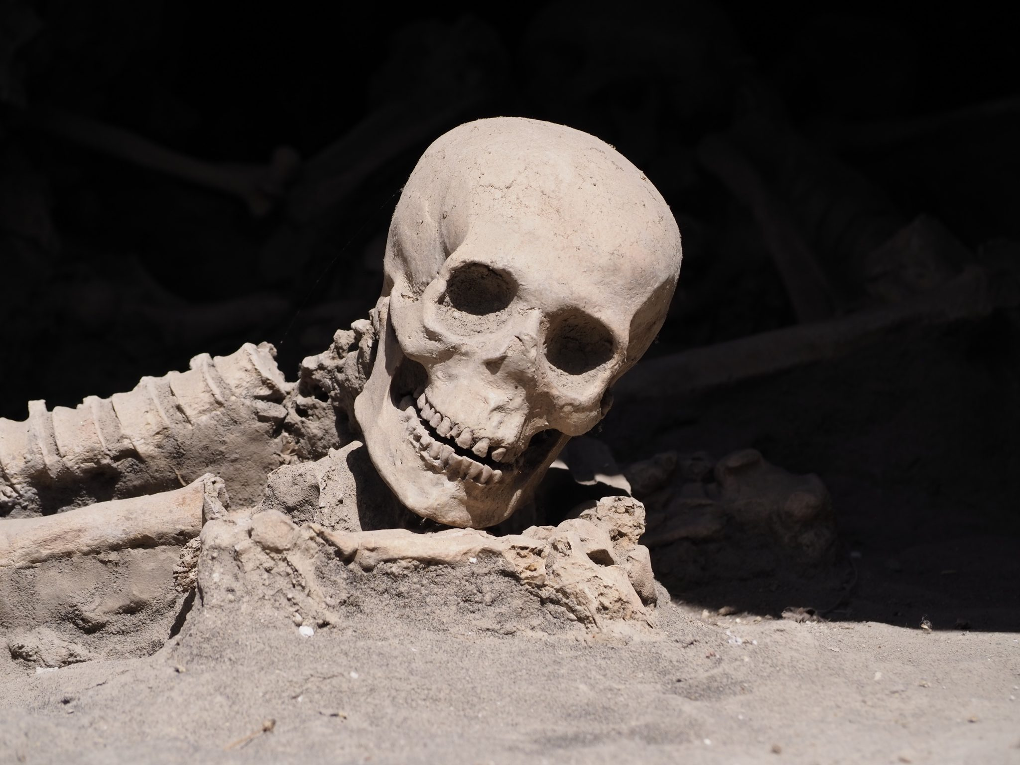 Close-up of the Skeletons of Herculaneum.